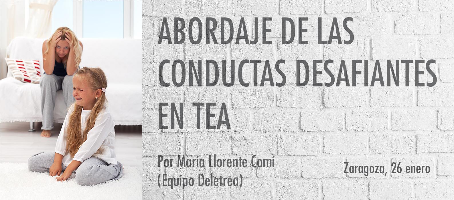 Abordaje de las Conductas Desafiantes en TEA-Zaragoza