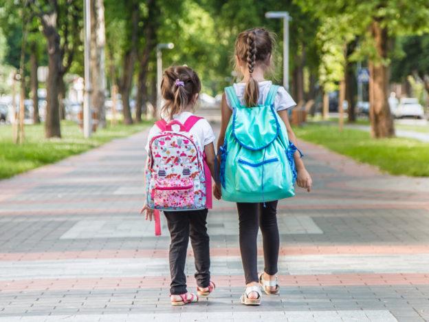 Autismo: herramientas de apoyo a la inclusión en la escuela course image